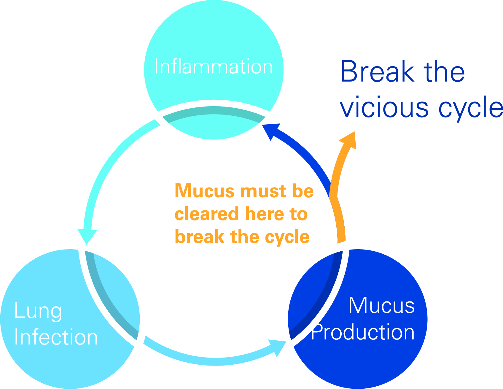 Vicious Cycle Image
